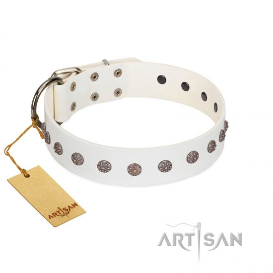 """Fresh Breeze"" FDT Artisan Elegant White American Bulldog Collar with Silvery Studs"