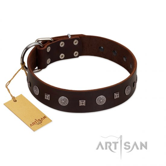 """Pure Sensation"" Exclusive FDT Artisan Brown Leather American Bulldog Collar with Fancy Brooches and Studs"