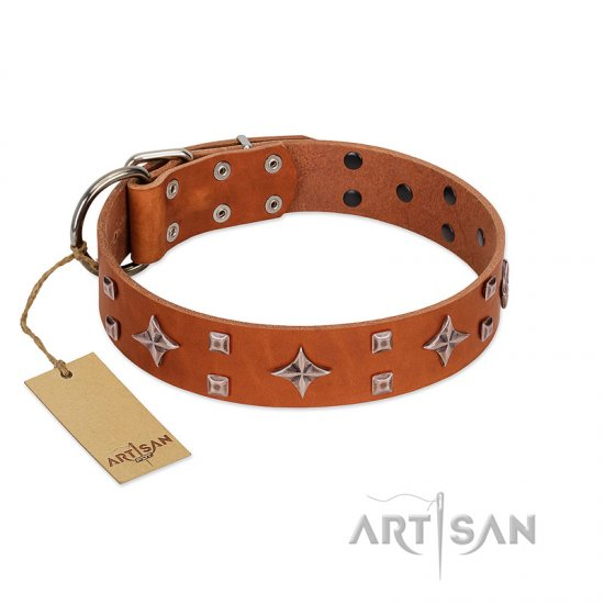 """Tawny Beauty"" FDT Artisan Tan Leather American Bulldog Collar Adorned with Stars and Tiny Squares"