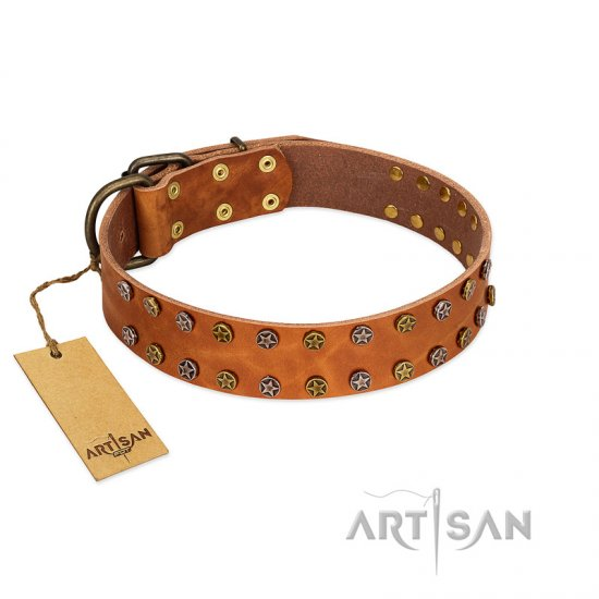 """Walk and Shine"" FDT Artisan Tan Leather American Bulldog Collar with Antiqued Studs"