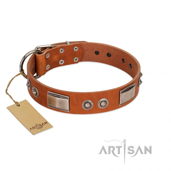 """Pawsy Glossy"" FDT Artisan Exclusive Tan Leather American Bulldog Collar 1 1/2 inch (40 mm) wide"