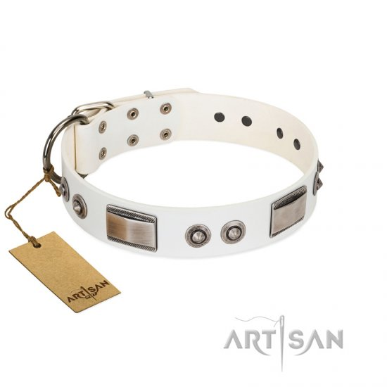 """Good-Luck Piece"" FDT Artisan White American Bulldog Collar Adorned with Chrome Plated Studs and Plates"