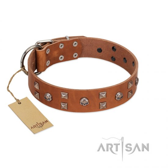 """Enchanted Skulls"" FDT Artisan Tan Leather American Bulldog Collar with Chrome Plated Skulls"
