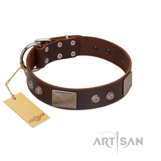 """Stone Stars"" Stylish Handmade FDT Artisan Brown Leather American Bulldog Collar"