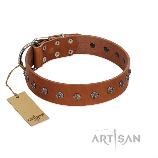 """Daintiness"" Designer Handmade FDT Artisan Tan Leather American Bulldog Collar with Silver-Like Adornments"