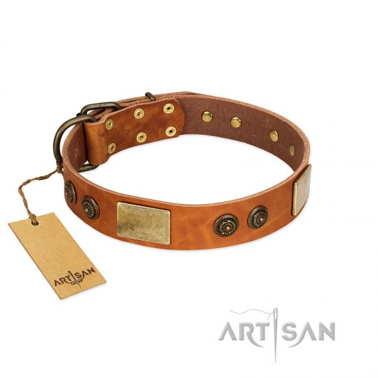 """Bronze Century"" FDT Artisan Tan Leather American Bulldog Collar with Plates and Brooches with Cool Ornament"