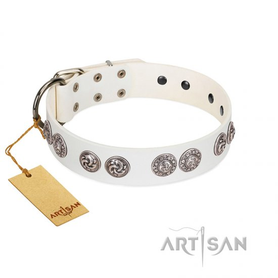 """Eye Candy"" Appealing FDT Artisan White Leather American Bulldog Collar with Chrome Plated Medallions"
