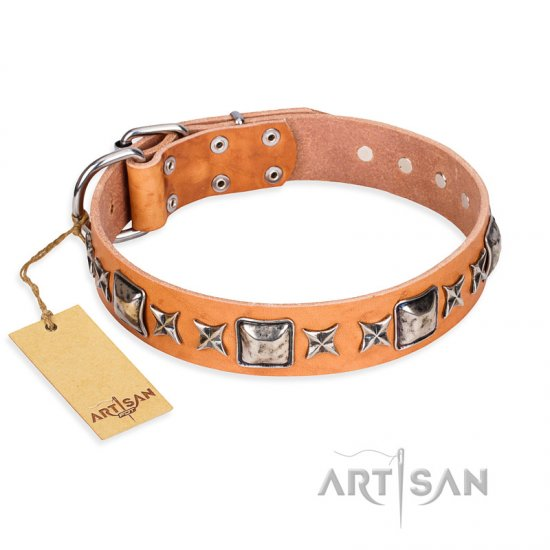 """Glamour Finery"" FDT Artisan Female American Bulldog collar of natural leather with stylish old-looking circles"
