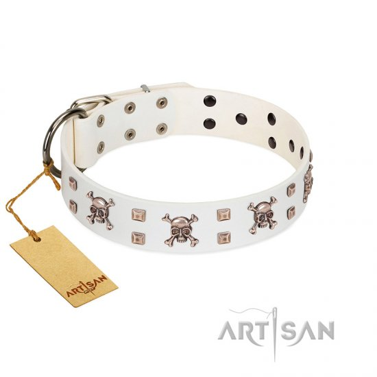 """Skull Island"" Premium Quality FDT Artisan White Designer American Bulldog Collar with Crossbones and Studs"