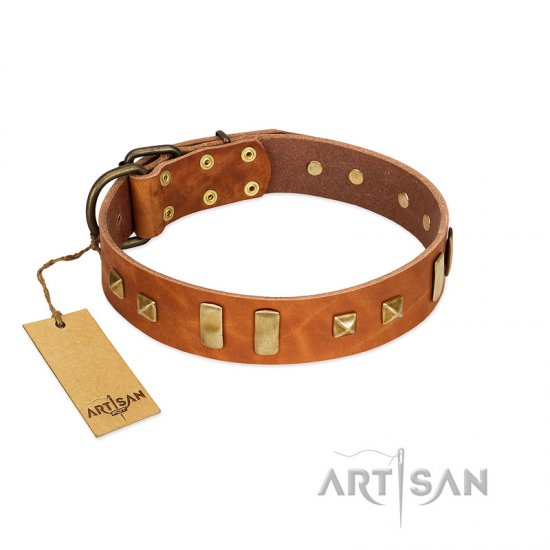 """Sand of Time"" FDT Artisan Tan Leather American Bulldog Collar with Old Bronze-like Studs and Plates"