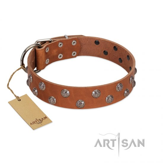 """Waltz of the Flowers"" Handmade FDT Artisan Tan Leather American Bulldog Collar with Chrome-plated Engraved Studs"