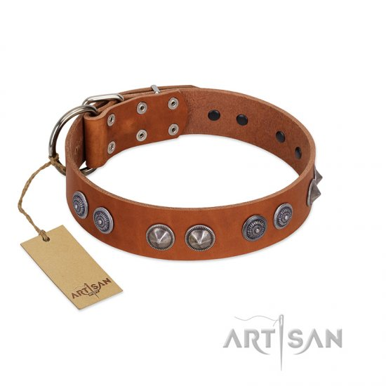 """Silver Necklace"" Incredible FDT Artisan Tan Leather American Bulldog Colar with Silver-Like Adornments"