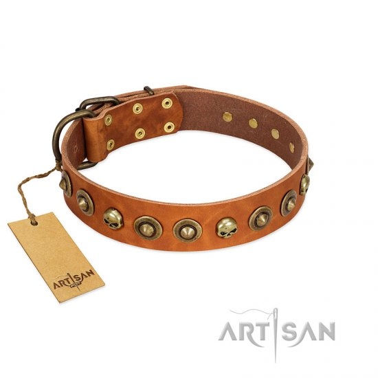 """Prez of the Pack"" FDT Artisan Tan Leather American Bulldog Collar with Skulls and Brooches"