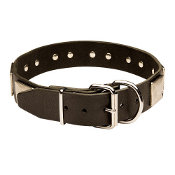 American Bulldog leather dog collar & vintage massive plates