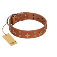 """Dreamy Gleam"" FDT Artisan Tan Leather American Bulldog Collar Adorned with Stars and Squares"