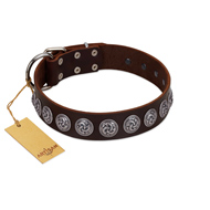 """Charming Circles"" FDT Artisan Brown Leather American Bulldog Collar with Silver-like Studs"