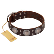 """Imperial Legate"" FDT Artisan Brown Leather American Bulldog Collar with Big Round Plates"