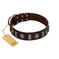 """Spiky Way"" FDT Artisan Brown Leather American Bulldog Collar with Silver-Like Decorations"