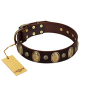 """Bronze Idol"" FDT Artisan Brown Leather American Bulldog Collar with Eye-catchy Ovals and Small Studs"