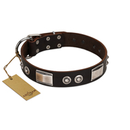 """Baller Status"" FDT Artisan Brown Leather American Bulldog Collar Adorned with a Set of Chrome Plated Studs and Plates"