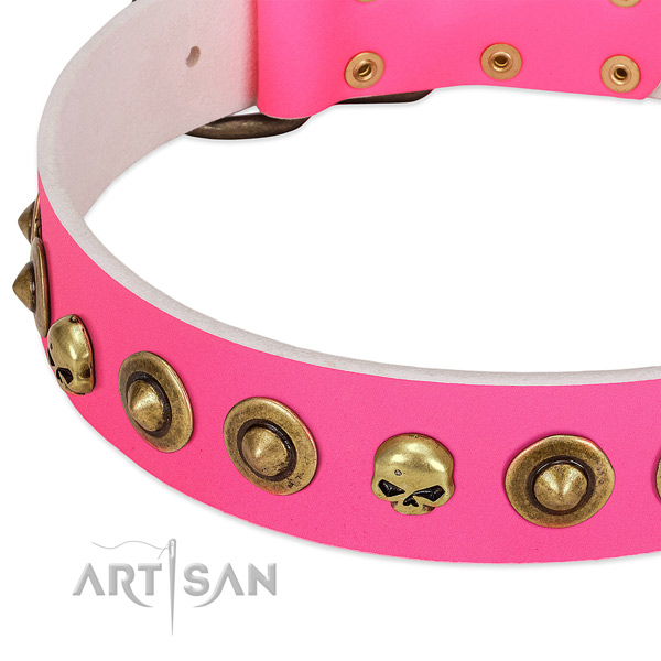 Stylish decorations on full grain natural leather collar for your canine