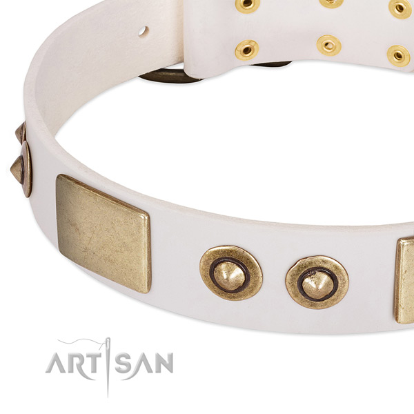 Strong fittings on full grain natural leather dog collar for your pet