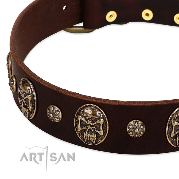 Rust-proof studs on full grain leather dog collar for your doggie