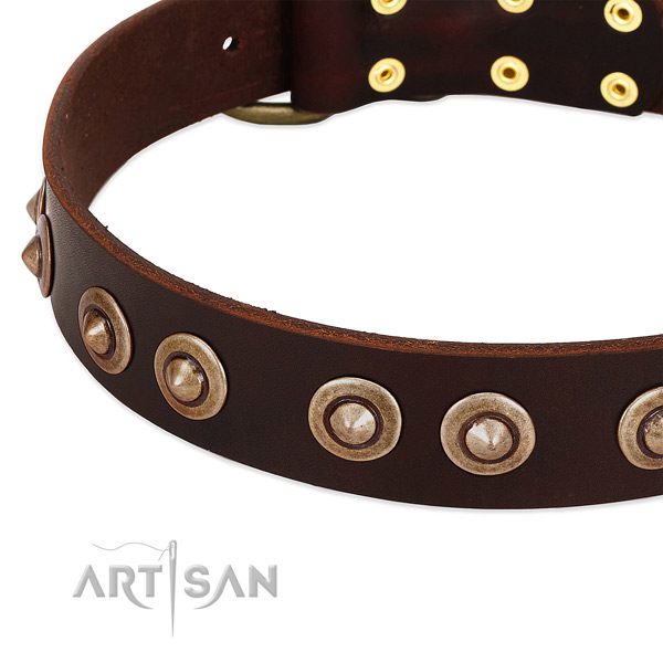 Corrosion resistant embellishments on natural genuine leather dog collar for your pet