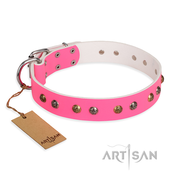 Daily walking handmade dog collar with rust-proof buckle