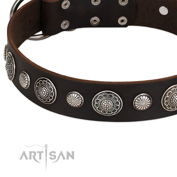 Full grain leather collar with corrosion resistant D-ring for your impressive pet