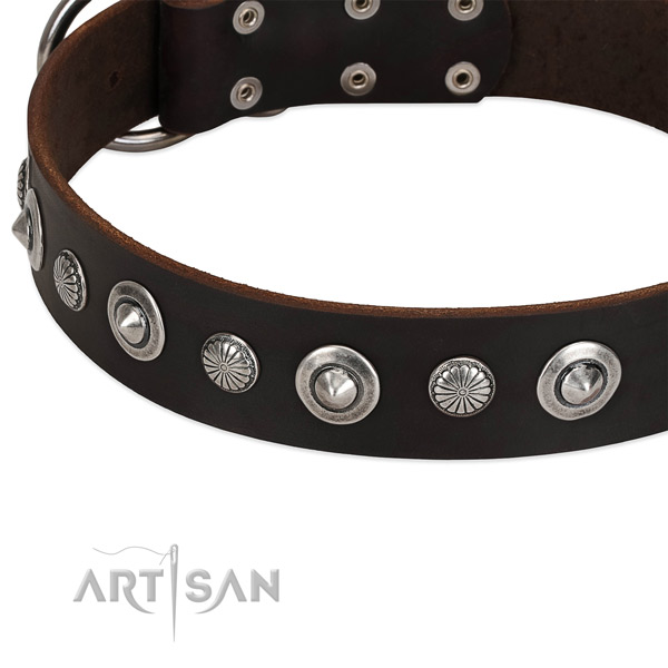 Significant adorned dog collar of finest quality full grain leather