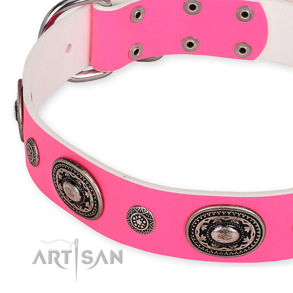 Full grain genuine leather dog collar with designer reliable adornments