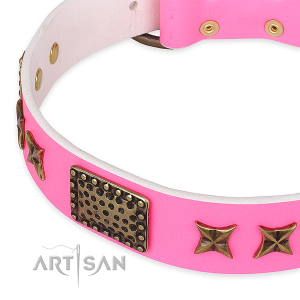 Full grain natural leather collar with reliable hardware for your impressive four-legged friend