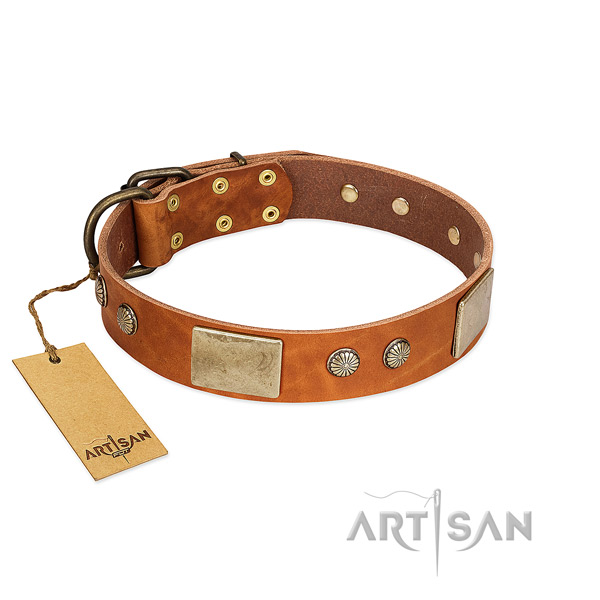 Easy adjustable natural genuine leather dog collar for everyday walking your doggie