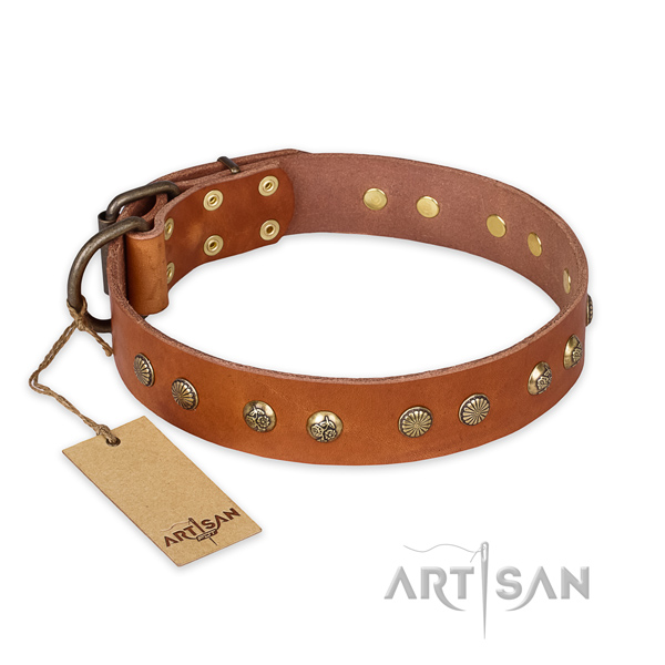 Stunning natural genuine leather dog collar with rust resistant D-ring