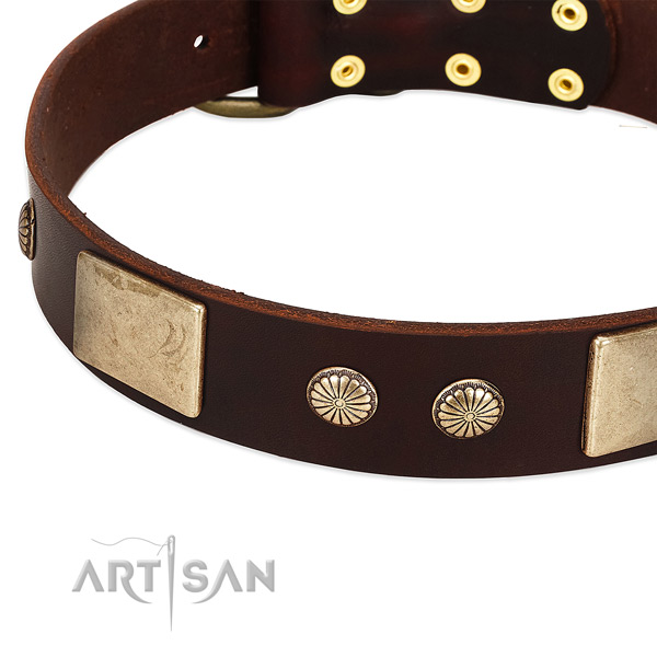 Corrosion proof buckle on full grain leather dog collar for your canine