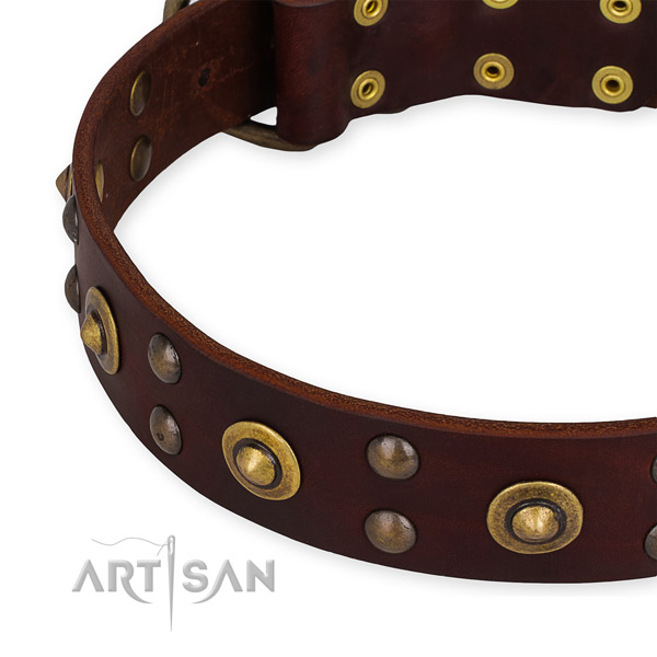 Full grain genuine leather collar with strong fittings for your lovely doggie