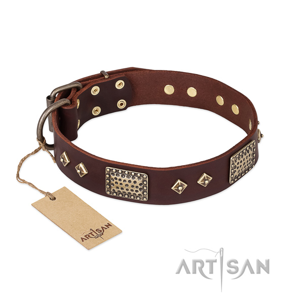 Amazing full grain genuine leather dog collar for comfortable wearing