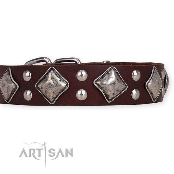 Full grain genuine leather dog collar with trendy corrosion resistant embellishments