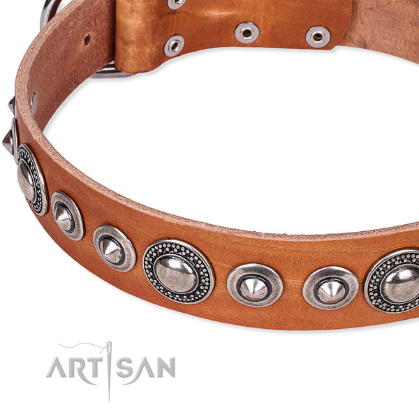 Comfy wearing embellished dog collar of fine quality full grain genuine leather