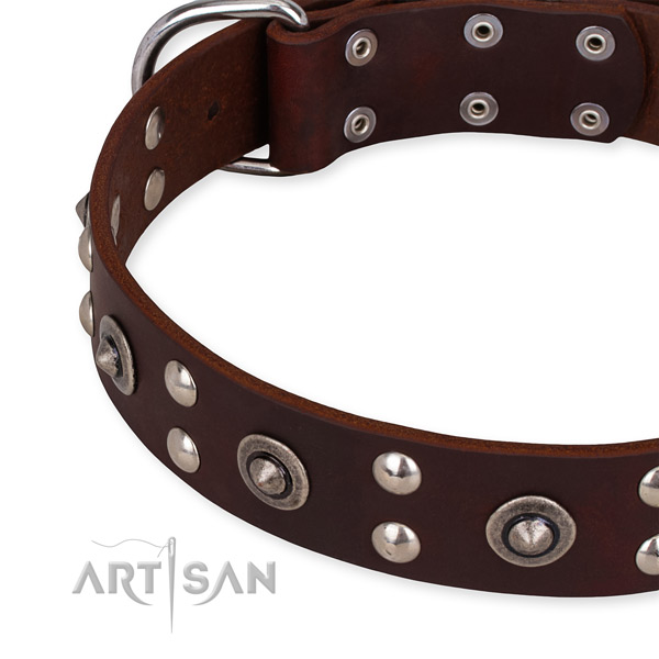 Genuine leather collar with strong buckle for your handsome dog