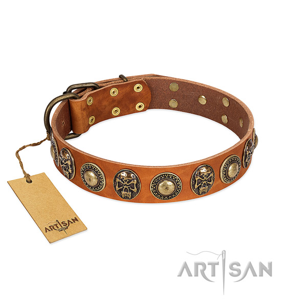 Adjustable leather dog collar for daily walking your pet