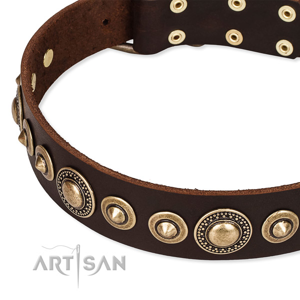 Strong genuine leather dog collar crafted for your beautiful doggie