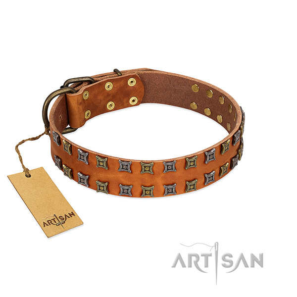 Top rate full grain natural leather dog collar with studs for your four-legged friend