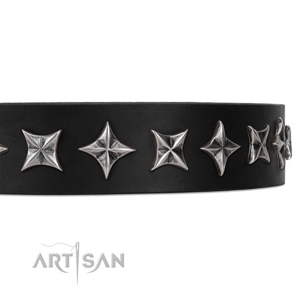 Everyday walking studded dog collar of durable leather