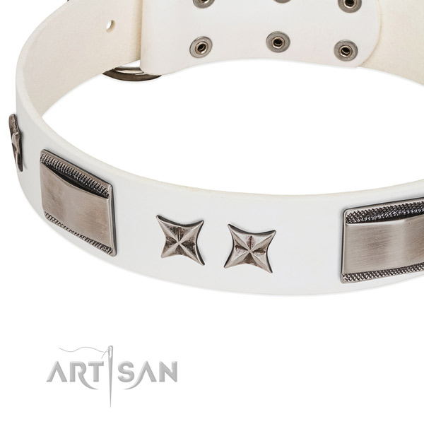 Soft leather dog collar with corrosion proof fittings
