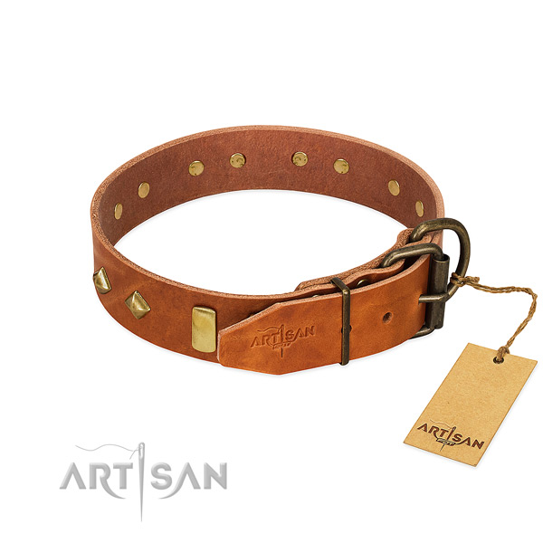 Walking natural leather dog collar with stylish design studs