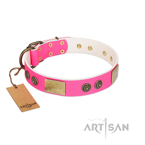Studded genuine leather dog collar for handy use