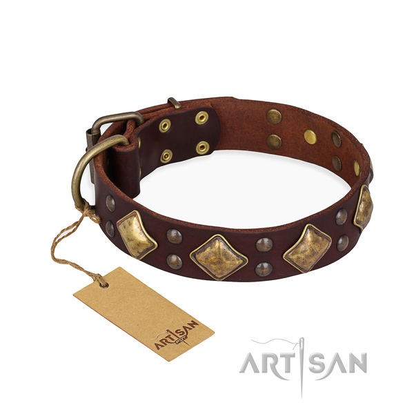 Basic training designer dog collar with rust-proof traditional buckle