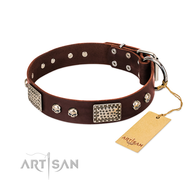 Easy to adjust leather dog collar for daily walking your dog